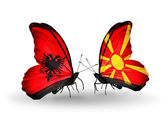 Butterflies with Albania and Macedonia flags — Stockfoto