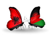 Butterflies with Albania and Malawi flags — Stock Photo