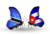 Butterflies with Botswana and Cuba flags — Stok fotoğraf