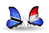Butterflies with Botswana and Luxembourg flags — Stok fotoğraf