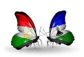 Butterflies with  Tajikistan and Lesotho flags — Stockfoto