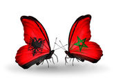 Butterflies with  Albania and Morocco flags — Stockfoto