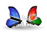 Butterflies with Botswana and Niger flags — Stok fotoğraf