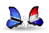 Butterflies with Botswana and Holland flags — Stockfoto