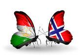 蝴蝶与塔吉克斯坦和挪威国旗 — 图库照片