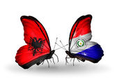 Butterflies with Albania and Paraguay flags — Stock Photo