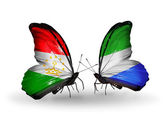 Butterflies with Tajikistan and Sierra Leone flags — Stock Photo