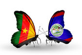 Butterflies with  Cameroon and Belize flags — Stock Photo
