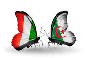 Butterflies with  Cote Divoire and Algeria flags — Stock Photo