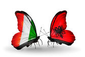 Butterflies with Cote Divoire and Albania flags — Stock Photo