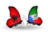 Motýli s albánií a rovníkové guiney příznaky — Stock fotografie