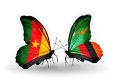 Vlinders met Kameroen en zambia vlaggen — Stockfoto