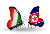 Butterflies with Cote Divoire and North Korea flags — Stock Photo