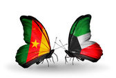 Butterflies with Cameroon and Kuwait flags — Stock Photo