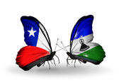 Butterflies with Chile and Lesotho flags — Stock Photo