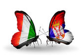 Butterflies with Cote Divoire and Serbia flags — Stok fotoğraf