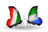 Butterflies with  Cote Divoire and Sierra Leone flags — Stock Photo