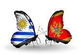 ウルグアイとモンテネグロ フラグと蝶 — ストック写真