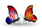 Butterflies with  Croatia and Sri Lanka flags — ストック写真