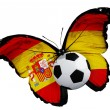 Butterfly with Spanish flag and ball — Stock Photo #48532707