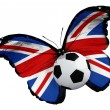 Butterfly with English flag and ball — Stock Photo