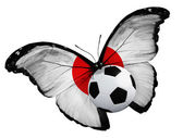 Butterfly with Japanese flag and ball — Stock Photo