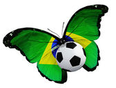 Butterfly with Brazilian flag and ball — Stock Photo