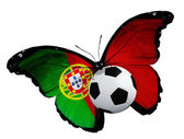 Butterfly with Portugal flag and ball — Stock Photo