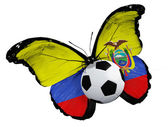 Butterfly with Albanian flag and ball — Stock Photo