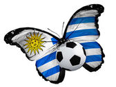 Butterfly with Uruguay flag and ball — Stock Photo