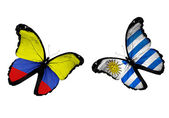 Butterflies with Columbia and Uruguay flags — Stock Photo
