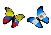 Butterflies with Ecuador and Argentina flags — Stock Photo