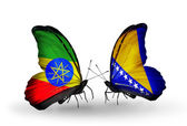 Butterflies with Ethiopia and Bosnia and Herzegovina flags — Stock Photo