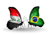 Butterflies with Iraq and  Brazil flags — Stock Photo