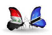 Butterflies with Iraq and  Botswana flags — Stock Photo