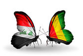 Butterflies with Iraq and  Guinea flags — Stock Photo