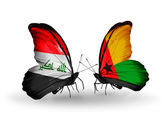 Butterflies with Iraq and  Guinea Bissau flags — Stock Photo