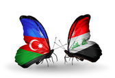 Butterflies with Azerbaijan and Iraq flags — Stock Photo