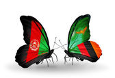 Butterflies with Afghanistan and Zambia flags — Stock Photo