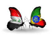 Butterflies with Iraq and Ethiopia flags — Stock Photo
