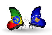 Butterflies with Ethiopia and Kosovo flags — Stock Photo