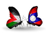 Butterflies with Palestine and Laos flags — Stock Photo