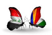 Dwa motyle z flagami w Iraku i Seszele — Zdjęcie stockowe