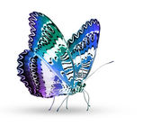 Color butterfly — Stock Photo