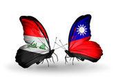 Twee vlinders met vlaggen van Irak en taiwan — Stockfoto