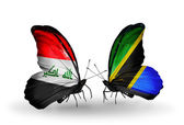 Two butterflies with flags  of Iraq and Tanzania — Stock Photo