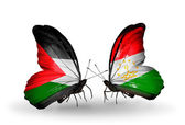Two butterflies with flags  of Palestine and  Tajikistan — Stock Photo