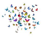 Many colorful butterflies — Foto de Stock