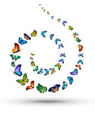 Spiral from butterflies — Foto de Stock
