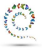 Spiral from butterflies — Stock Photo